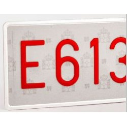 PLACA ORDINARIA V ESPECIAL LARGA 124-S